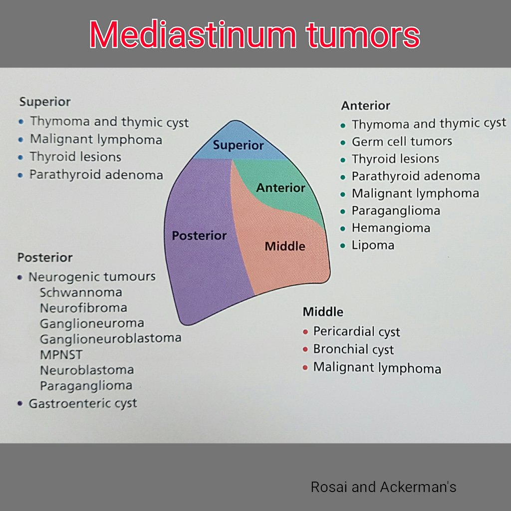 mediastinal tumors  Humpath  Human pathology