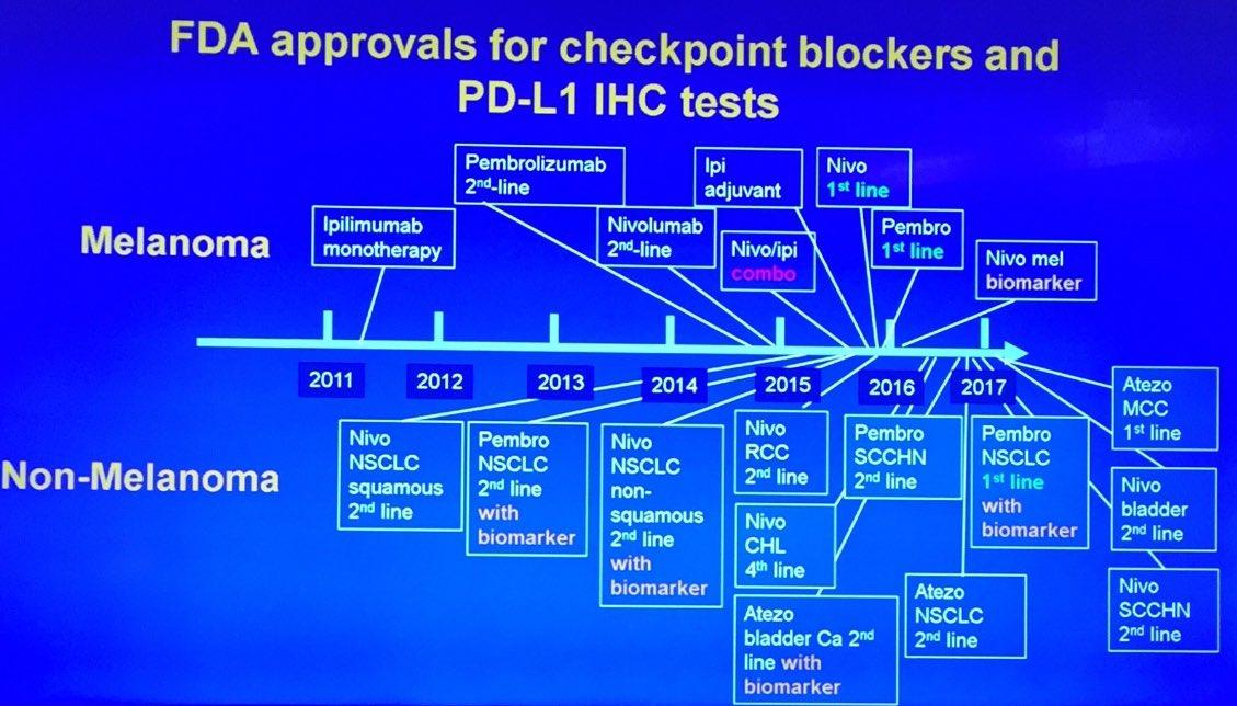 Immune Checkpoint Inhibitors Humpath Com Human Pathology
